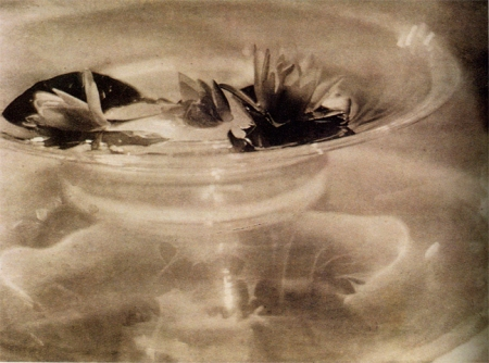 de-meyer-still-life-19081