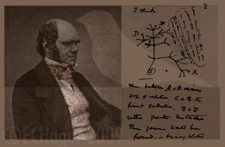 darwin-post