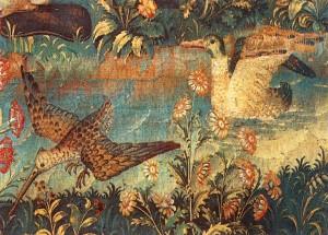 Tapbirds