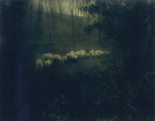 http://venetianred.files.wordpress.com/2009/09/edward-steichene28094pastoral-moonlight-1907.jpg