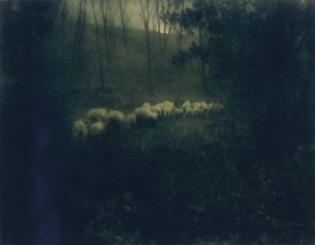 Edward Steichen—Pastoral Moonlight, 1907