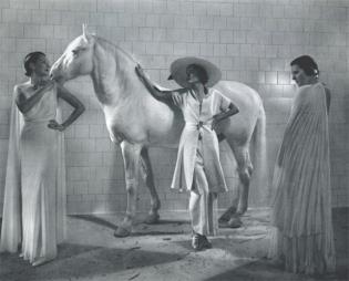 Edward Steichen—White, 1935