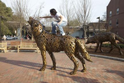 Stuz Wolf, NC State University