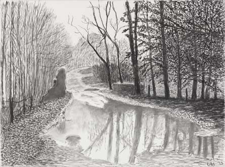 David Hockney, Woldgate, 6-7 February, from 'The Arrival of Spring in 2013 Charcoal on paper, 22 5/8 x 30 1/4""